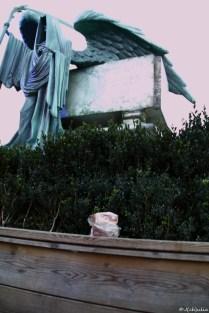 Jemand hatte sein Vesperbrot bei Riddle's Grab vergessen. Akward.