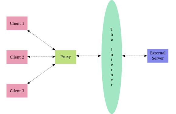 Figure 30: a caching proxy server