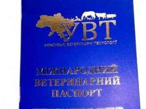 Паспорт міжнародний (синій) номерний