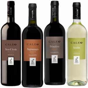 Wijnpakket Italia 4 - Wijngeschenk gevuld met luxe wijnen uit Italia - Kerstpakket wijn - www.kerstpakkettencadeaubon.nl