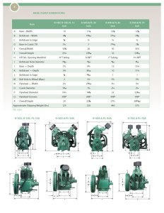 Champion Replacement Pumps