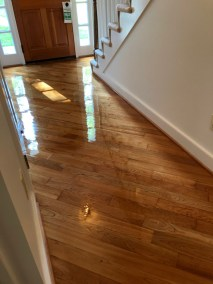 11 22 9 - Refinished Floors