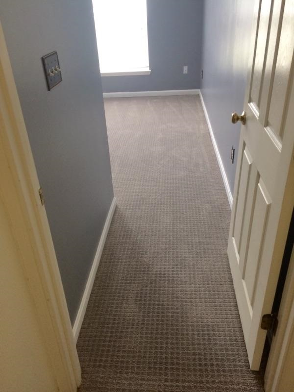 5 21 pic 5 - New Carpet and Tile