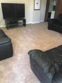 5 8 8 e1525795434468 - New Carpeted Floor