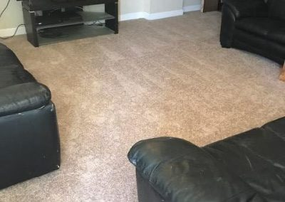 New Carpeted Floor
