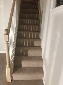 carpet stairs - New Carpeted Stairs