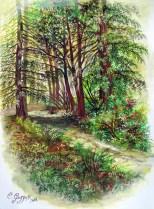 Sentiero nel bosco, tempere