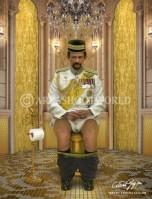 [[Image:Sultan Haji Hassanal Bolkiah .png|the daily duty collection areashoot world]]