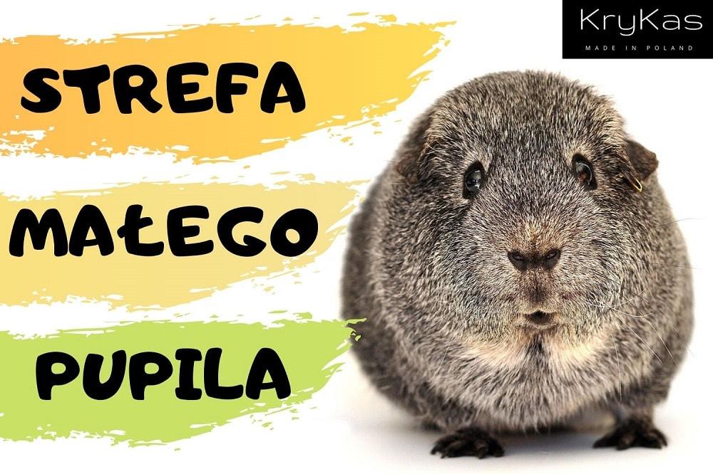 KryKas - legowiska dla małych zwierząt królików świnek morskich