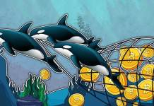 BITCOIN-WHALES-QUIETLY-STOCKPILED-150K-BTC-IN-LAST-TWO-MONTHS