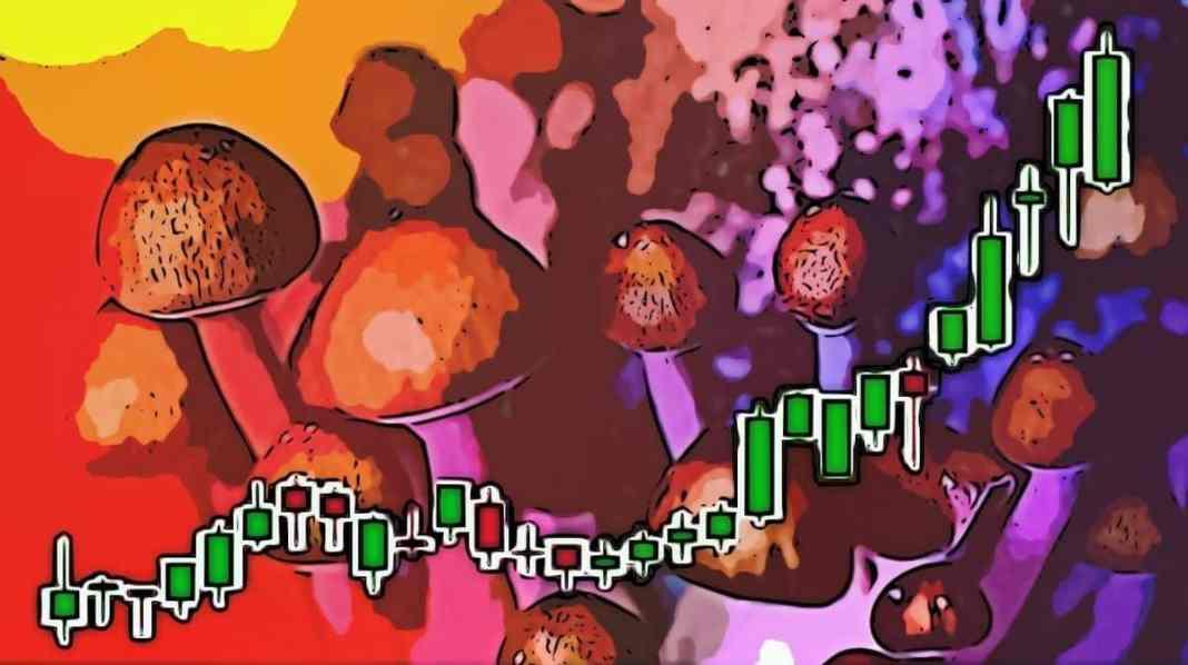 psychedelicke akcie rastu boom 2020 psilocybin