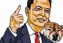Elon Musk zachráni DOGE