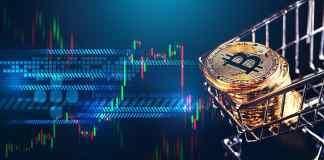Inštitucionálni investori a BTC