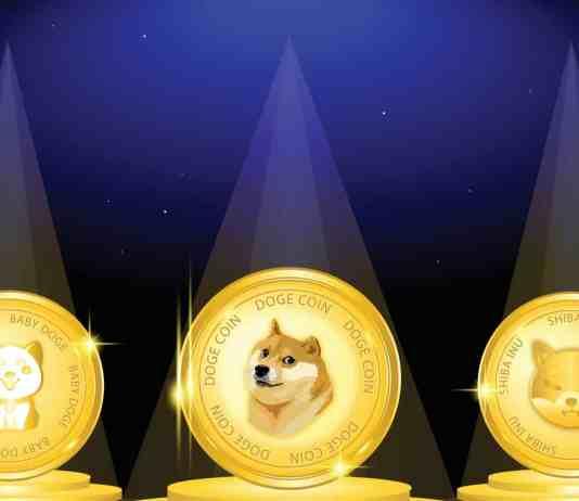 Meme kryptomeny Doge Shiba Baby doge