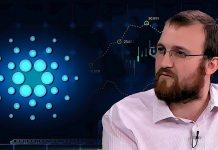 Charles Hoskinson kritizuje MMF