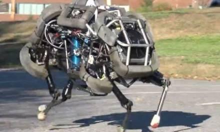 Galloping Robots!