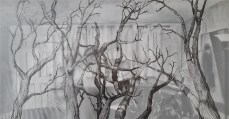 """Outside In Home, 2016, Graphite and Charcoal on Paper, 17x30"""". Krystal Booth"""