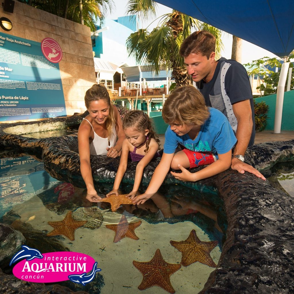 Krystal International Vacation Club Highlights Interactive Aquarium in Cancún (2)