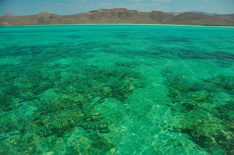 Baja California and its Sea of Cortez
