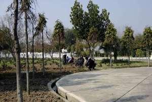 Gärtner bei der Landschaftspflege