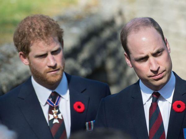 Meet Princes William And Harrys Secret StepSister