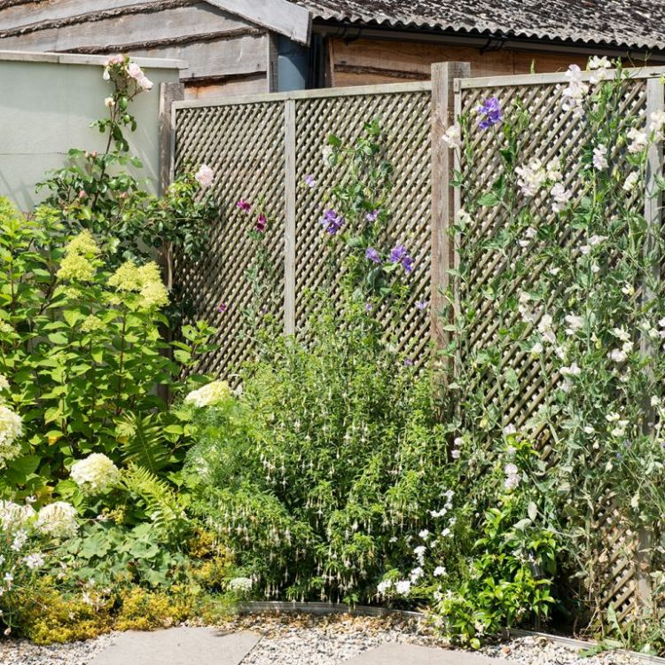 Split-level-garden-makeover-with-plant-packed-borders-9