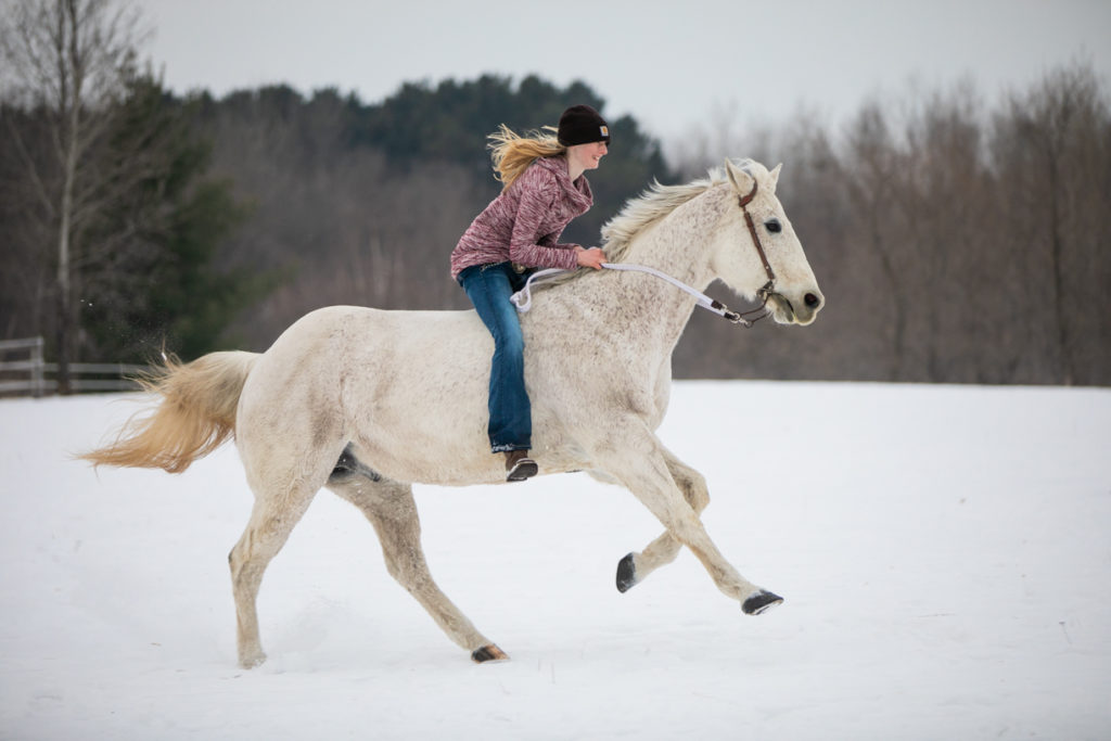 galloping in the snow