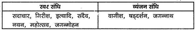 KSEEB Solutions for Class 10 Hindi वल्लरी Chapter 3 गिल्लू III 2