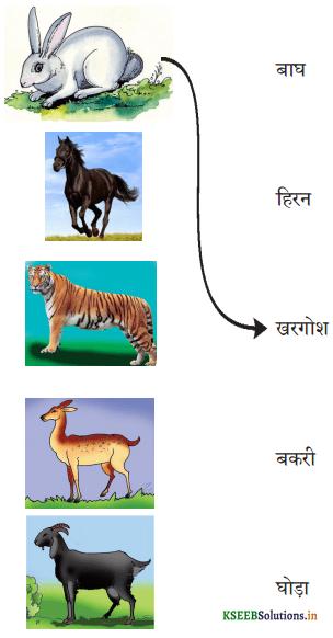 KSEEB Solutions for Class 6 Hindi वल्लरी Chapter 19 हाथी मेरा साथी 2