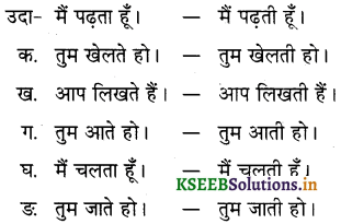 KSEEB Solutions for Class 6 Hindi वल्लरी Chapter 8 मैं, हम, तू, तुम, आप 10
