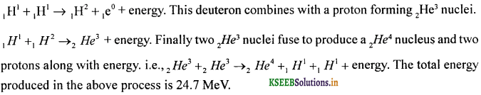 2nd PUC Physics Question Bank Chapter 13 Nuclei 14