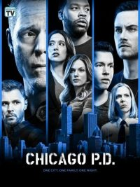 Chicago PD Saison 6