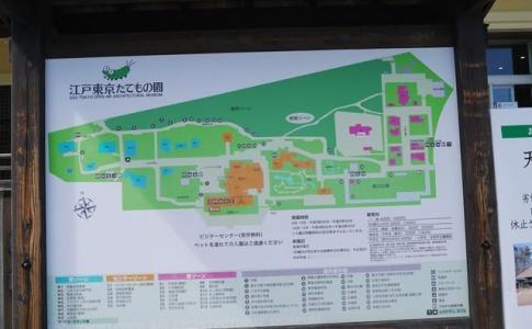 江戸東京たてもの園アクセス感想ジブリの世界を体験・撮影はNG?