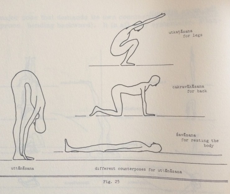after-uttanasana