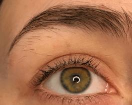 eyebrow w-o