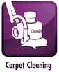 carpet cleaning mokena, il