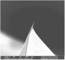 FN-5 - Carbon Nanotube AFM Probe
