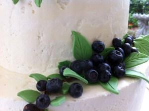 JesAndy Jubilee!  The Cake Story!