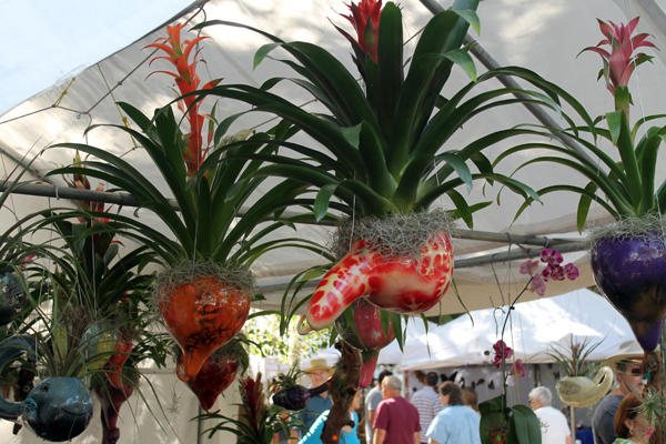 Bromeliads at 2013 Homosassa Seafood, Art, and Crafts Festival