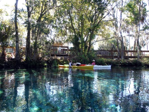Kayaking Three Sisters Springs