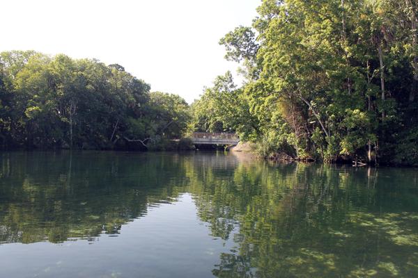 On the Homosassa River