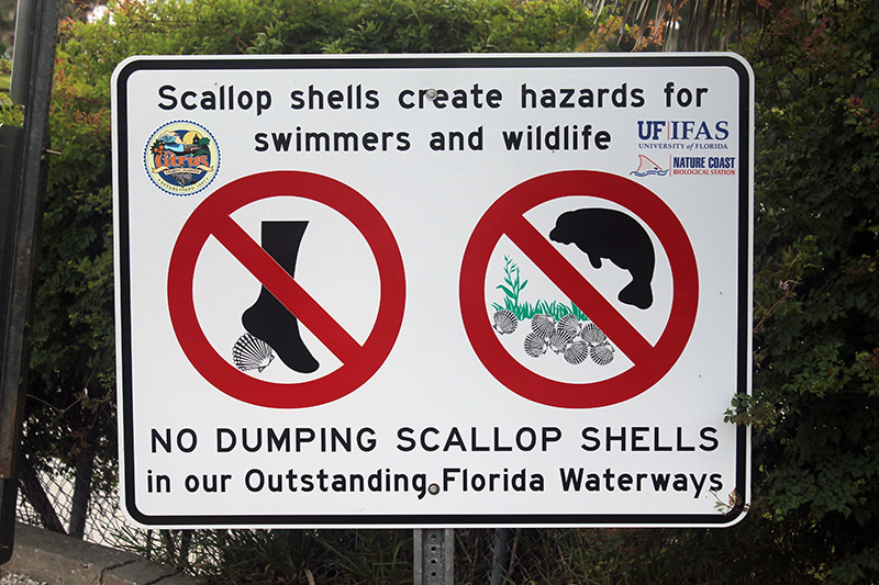 scallop sign