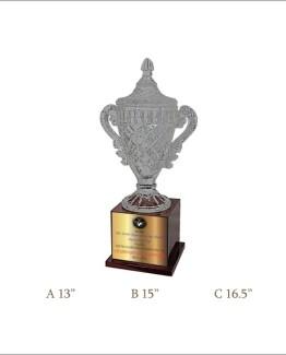 Crystal Trophy CG 211