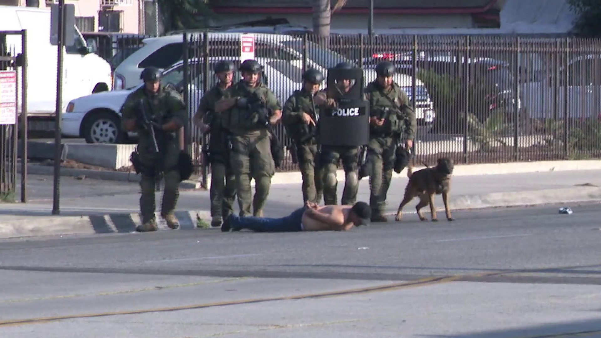 A SWAT team takes an assault suspect into custody following a standoff in El Monte on Sept. 1, 2019. (Credit: KTLA)