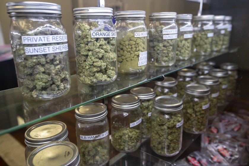 Marijuana found in an illegal marijuana dispensary raided by the LAPD in Wilmington in May, 2019.(Credit: Allen J. Schaben / Los Angeles Times)