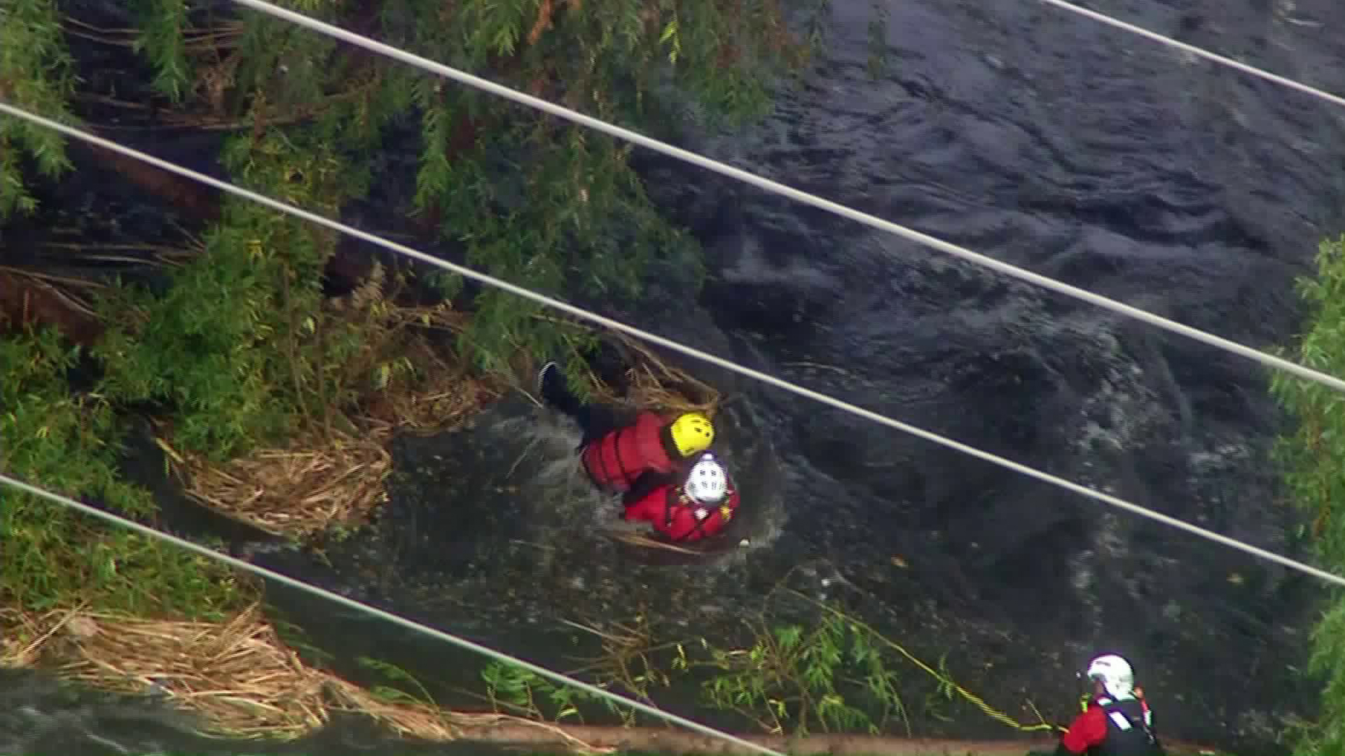 Firefighters rescue a man (in the yellow helmet) from the swollen Los Angeles River on Nov. 27, 2019. (Credit: KTLA)