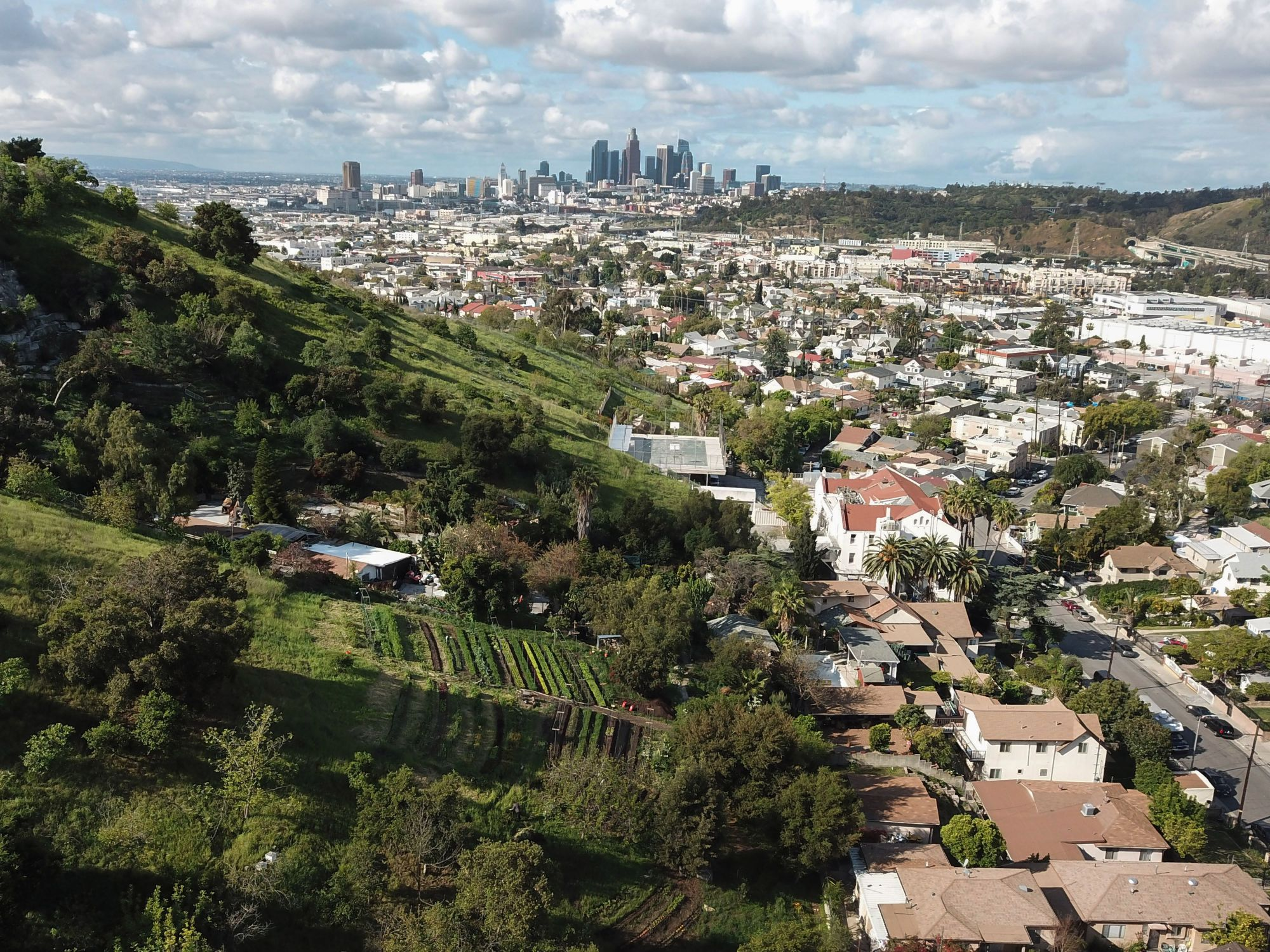 """An aerial view of the small urban farm """"Avenue 33 Farm"""" with the Los Angeles skyline in the background on March 25, 2020. (ROBYN BECK/AFP via Getty Images)"""