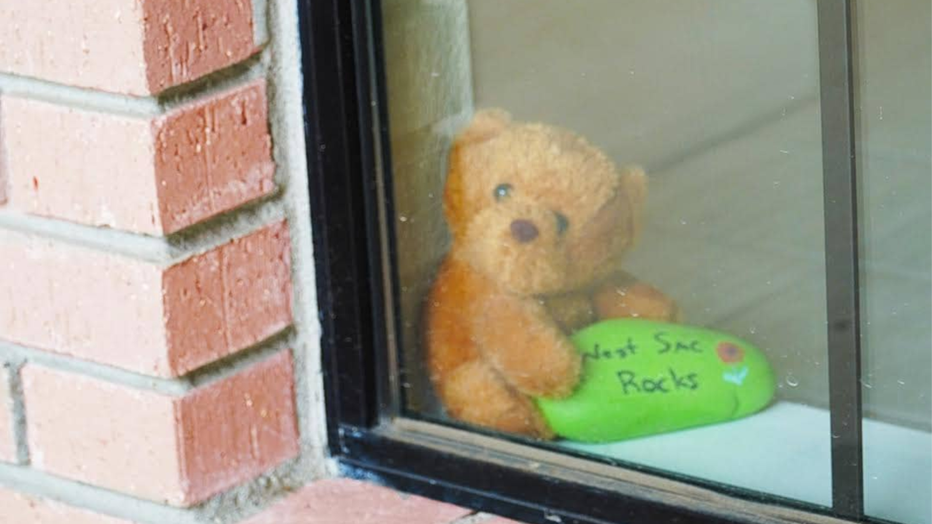 "While Yolo County was under shelter-in-place orders, officials in one of its cities, West Sacramento, asked residents to display teddy bears in their windows to create a ""bear hunt"" for children to spot while on walks as schools and playgrounds remained closed. (City of West Sacramento, Government/ Facebook)"