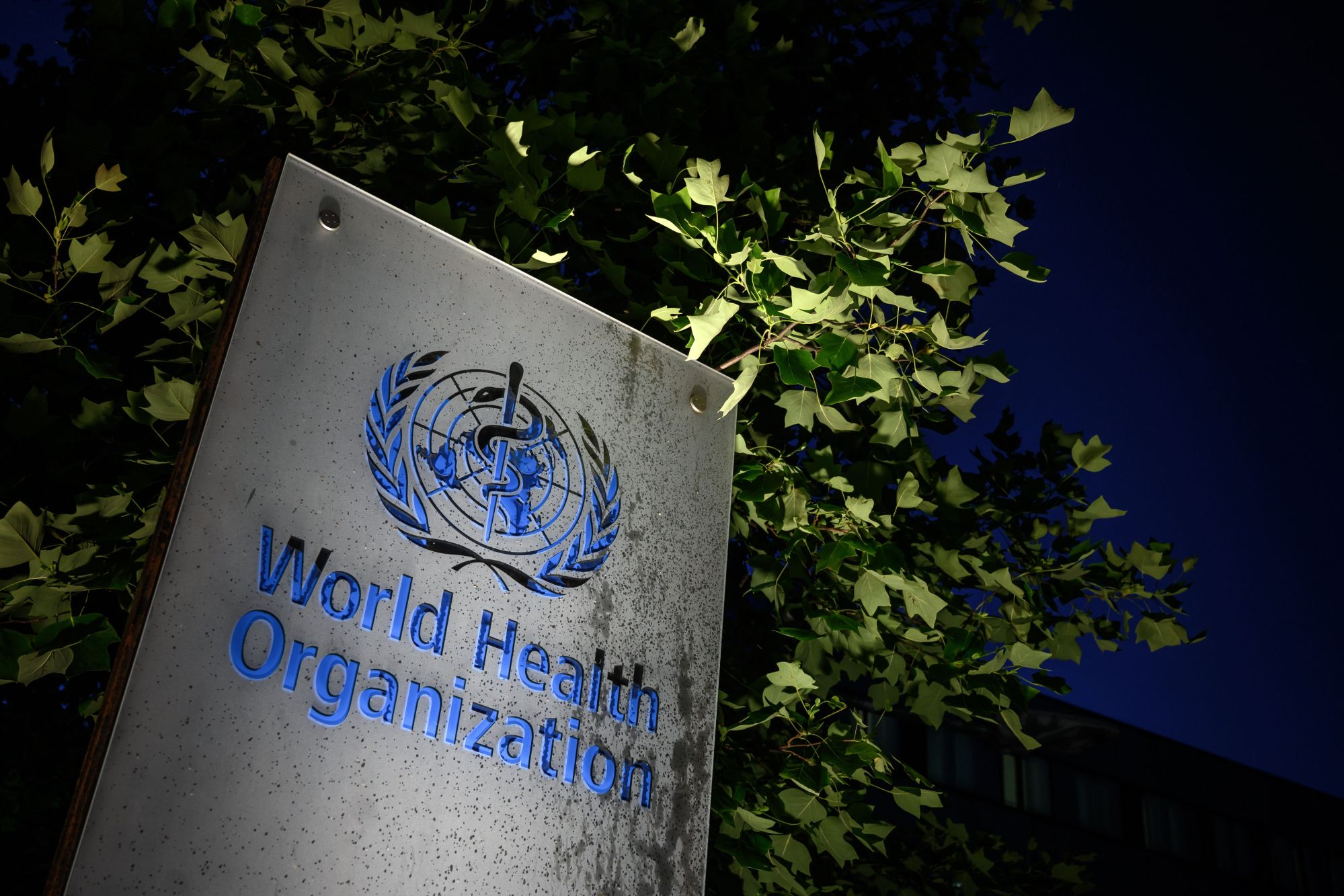 A photo taken in the late hours of May 29, 2020 shows a sign of the World Health Organization at their headquarters in Geneva amid the COVID-19 outbreak. President Donald Trump he was breaking off U.S. ties with the World Health Organization, which he says failed to do enough to combat the spread of coronavirus. (Fabrice COFFRINI/AFP via Getty Images)