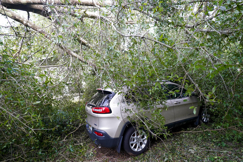 A car is covered in branches in the aftermath of Hurricane Sally, Friday, Sept. 18, 2020, in Pensacola, Fla. (AP Photo/Gerald Herbert)